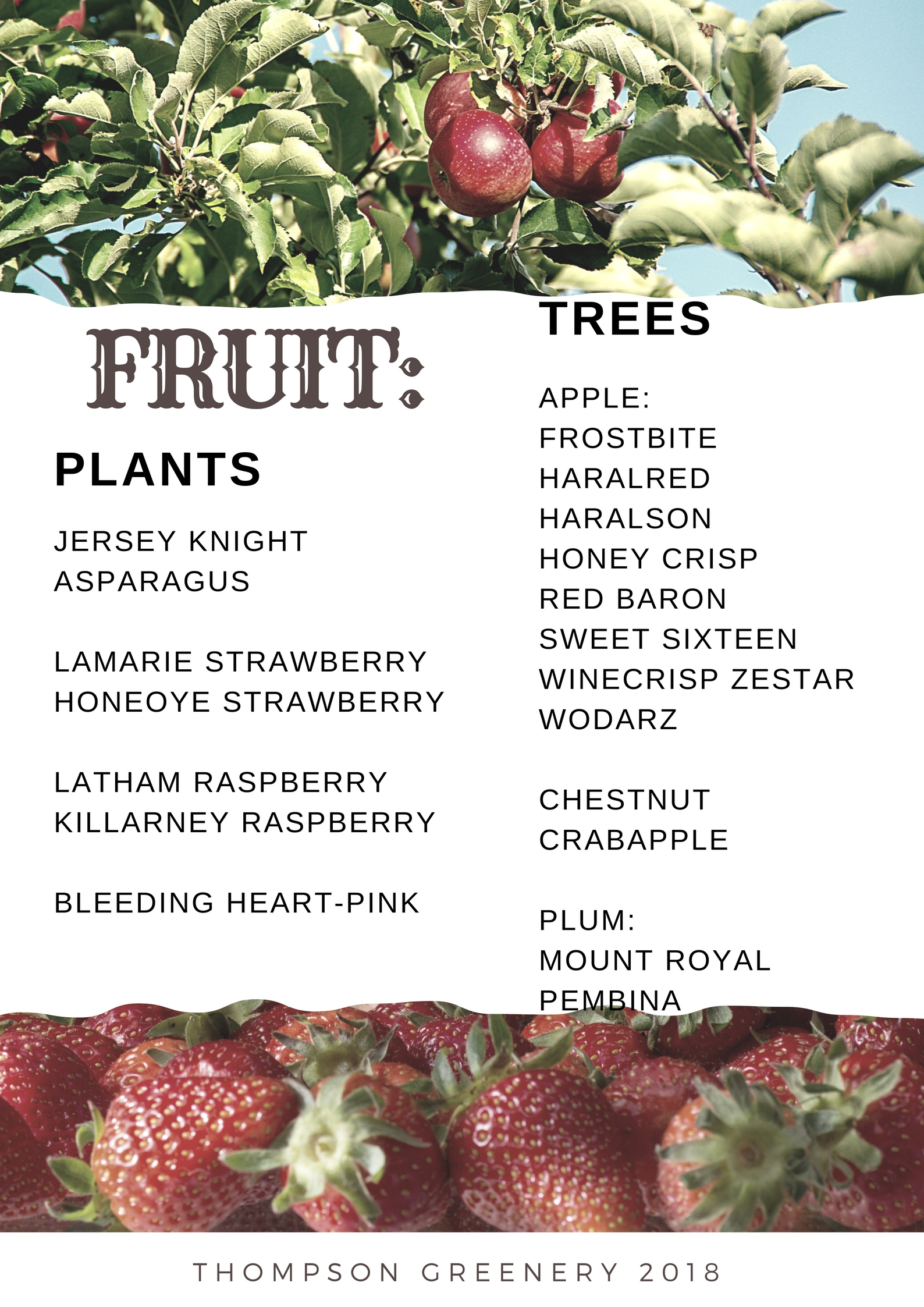 fruit trees 2018